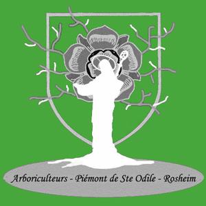 Logo de l'Association de Arboriculteurs du Piémont de Sainte Odile